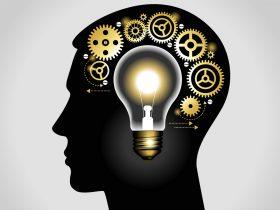 intellectual-property-man-head1
