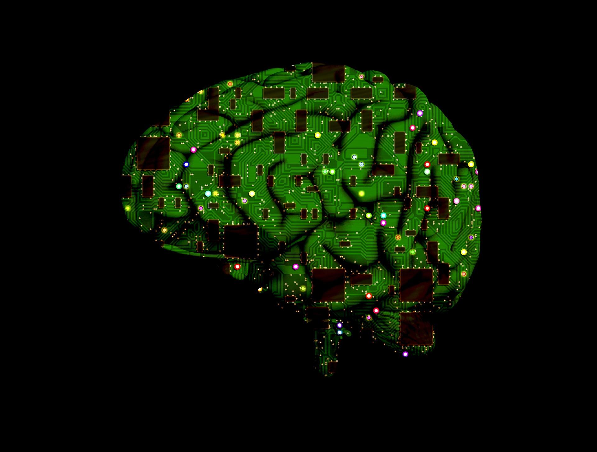 brain-1845944_1920